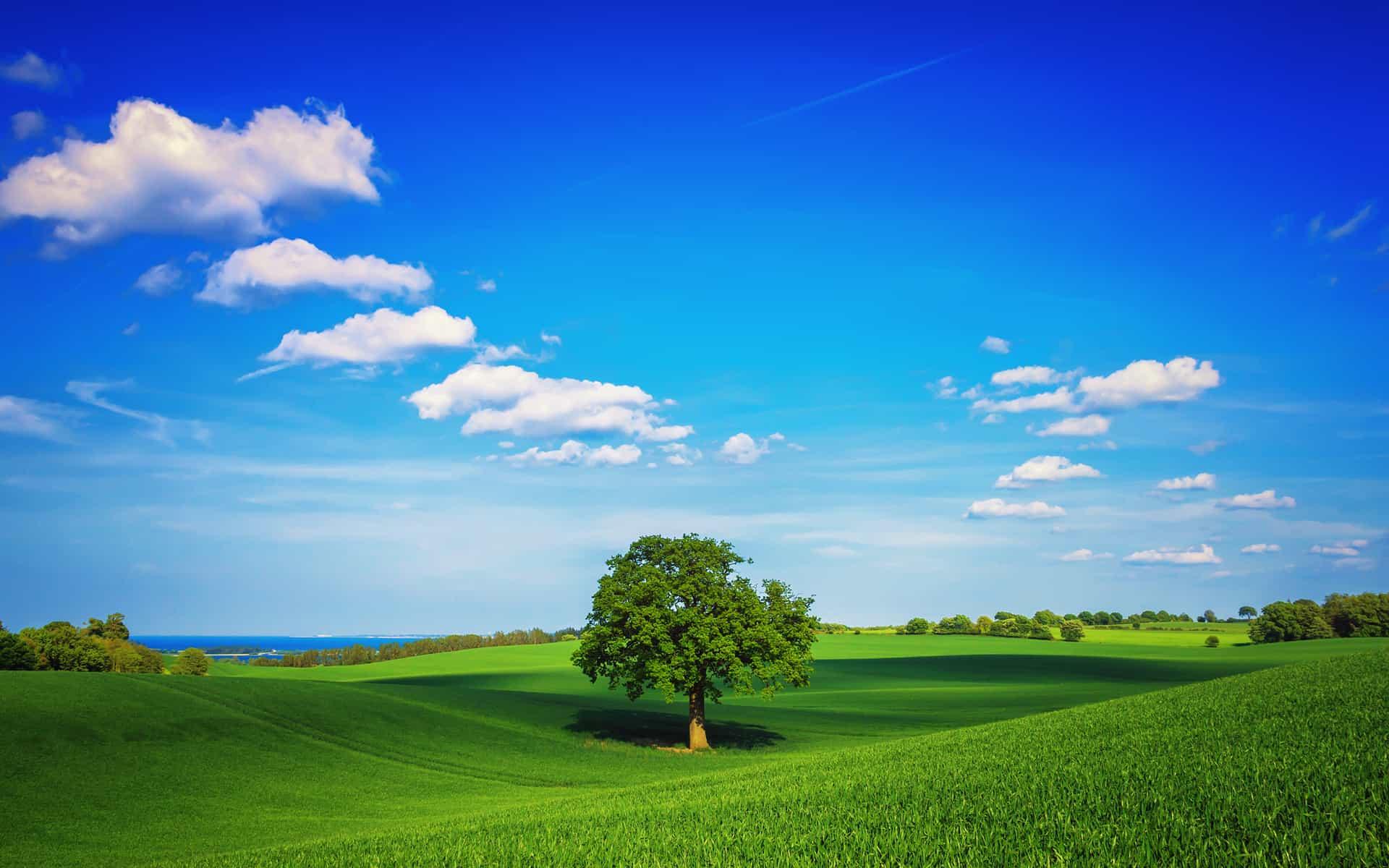 nature wallpapers mp3 download: 6876494-landscape-photos